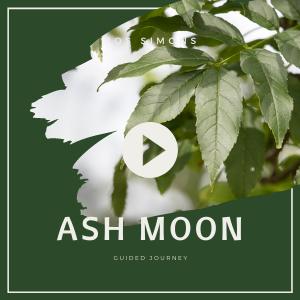 Ash moon GJ pic